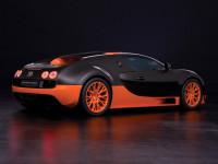 Bugatti-Veyron_3.jpg
